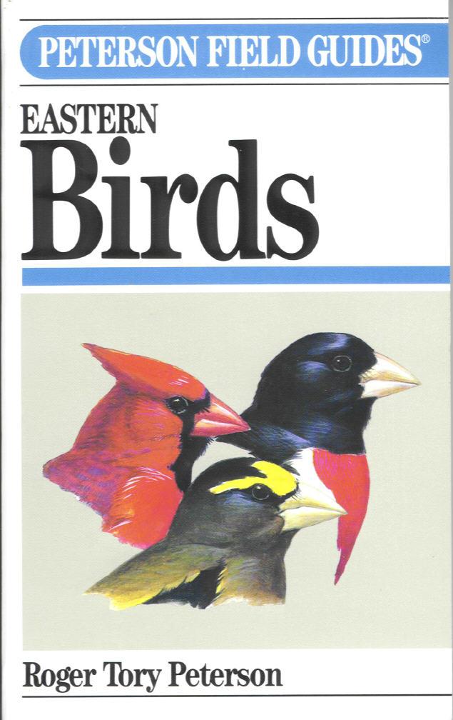 birder.jpg